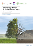 Reaching zero emissions by 2050 in the Japanese energy system